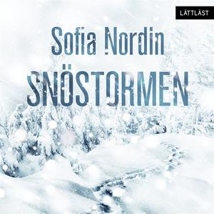 Snöstormen / Lättläst (ljudbok) av Sofia Nordin