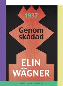 Genomskådad (e-bok) av Elin Wägner