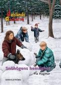 Snöhögens hemlighet - Dalslandsdeckarna 4