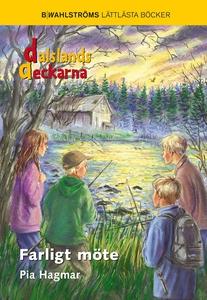 Dalslandsdeckarna 6 - Farligt möte (e-bok) av P
