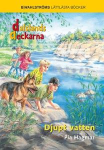 Dalslandsdeckarna 7 - Djupt vatten (e-bok) av P