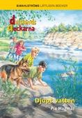 Djupt vatten - Dalslandsdeckarna 7