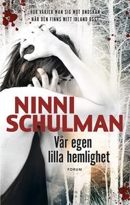 Vår egen lilla hemlighet (e-bok) av Ninni Schul