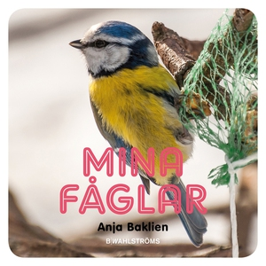 Mina fåglar (e-bok) av Anja Baklien