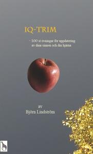 IQ-Trim (e-bok) av Björn Lindström