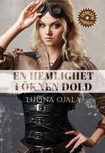 En hemlighet i öknen dold (e-bok) av Lupina Oja