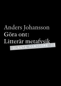 Göra ont - Litterär metafysik (e-bok) av Anders