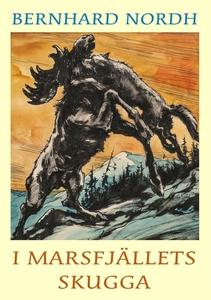 I Marsfjällets skugga (e-bok) av Bernhard Nordh