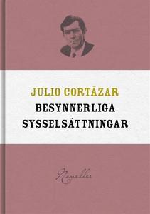 Besynnerliga sysselsättningar (e-bok) av Julio