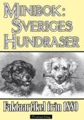 Minibok: Sveriges hundraser 1880