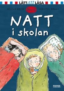 Natt i skolan (e-bok) av Helena Bross