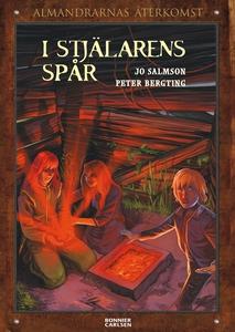 I stjälarens spår (e-bok) av Jo Salmson