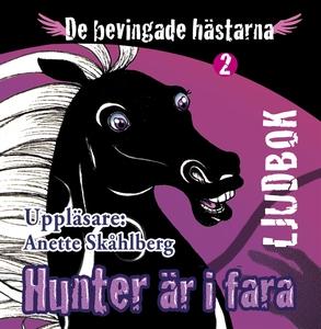 Hunter är i fara (ljudbok) av Anette Skåhlberg