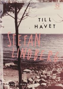 Till havet (ljudbok) av Stefan Lindberg