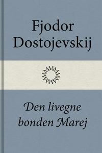 Den livegne bonden Marej (e-bok) av Fjodor Dost