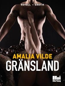 Gränsland (e-bok) av Amalia Vilde