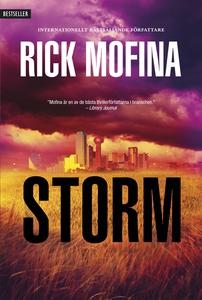 Storm (e-bok) av Rick Mofina
