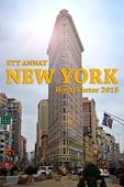 Ett annat New York: Höst/Vinter 2015