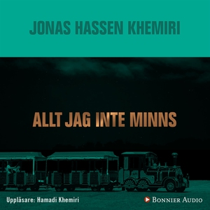 Allt jag inte minns (ljudbok) av Jonas Hassen K