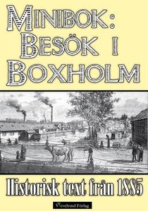 Minibok: Ett besök i Boxholm år 1885 (e-bok) av