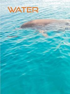 Water: sensory stimulation (e-bok) av Pia Lebsu