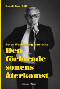 Den förlorade sonens återkomst - Peter Wallenbe