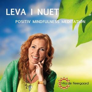 Leva i nuet : positiv mindfullness meditation (