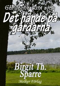 Det hände på gårdarna (e-bok) av Birgit Th. Spa