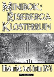 Minibok: Skildring av Riseberga klosterruiner å