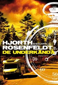 De underkända (e-bok) av Hans Rosenfeldt, Micha
