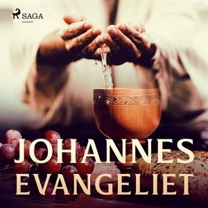 Johannesevangeliet (ljudbok) av Aposteln Johann