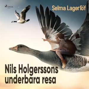 Nils Holgerssons underbara resa (ljudbok) av Se