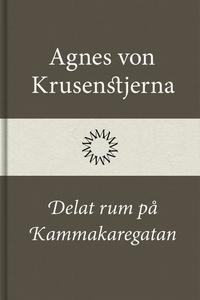 Delat rum på Kammakaregatan (e-bok) av Agnes vo