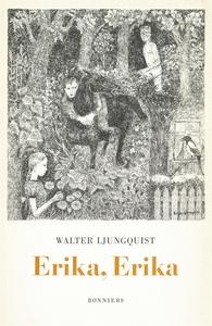 Erika, Erika : En ordvävnad (e-bok) av Walter L