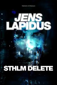 STHLM DELETE (e-bok) av Jens Lapidus