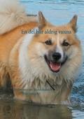 En del blir aldrig vuxna: Berättelsen om Islandshunden från Gimgölet