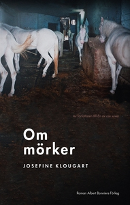 Om mörker (e-bok) av Josefine Klougart
