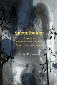 Spegelboken (e-bok) av Lidija Praizovic