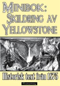 Skildring av Yellowstone 1875 (e-bok) av