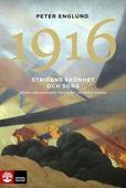 Stridens skönhet och sorg 1916