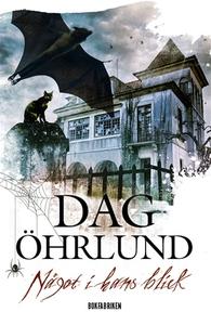 Något i hans blick (e-bok) av Dag Öhrlund