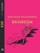 Brandon - en e-singel ur Granta #6