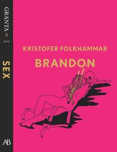Brandon - en e-singel ur Granta #6 (e-bok) av K