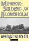 Minibok: Skildring av Blomsholms fornminnen år 1910