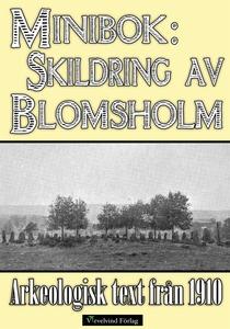 Minibok: Skildring av Blomsholms fornminnen år