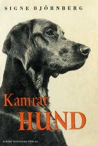 Kamrat hund (e-bok) av Signe Björnberg