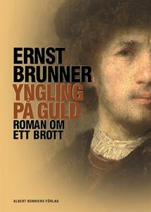 Yngling på guld : Roman om ett brott (e-bok) av