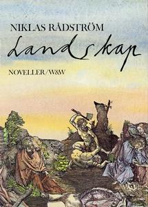 Landskap : Noveller (e-bok) av Niklas Rådström