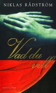 Vad du vill (e-bok) av Niklas Rådström