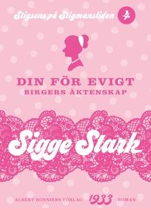 Din för evigt : Birgers äktenskap (e-bok) av Si